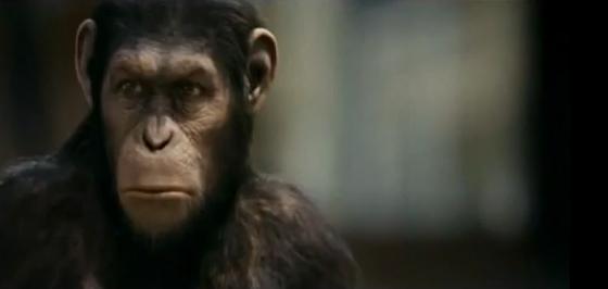 Planeta do macaco publicitário