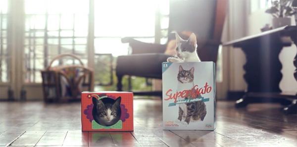 Embalagem apaixonante para gatos